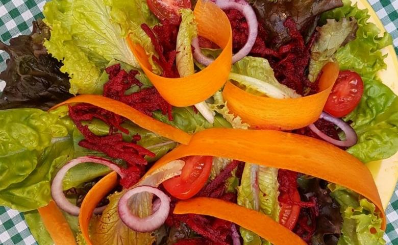 Alimentação Saudável, Donantonia - Foto Divulgação